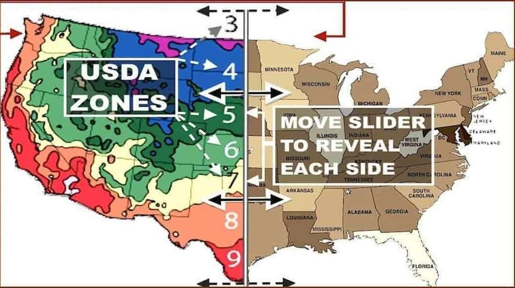 USDA Zones Map
